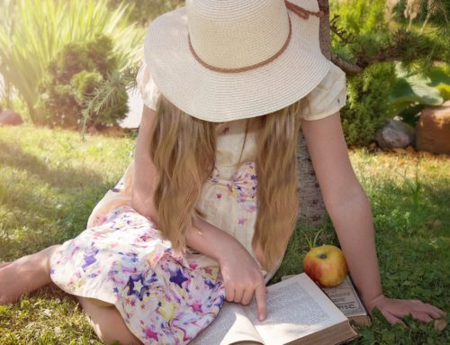Summer Reads that Shined